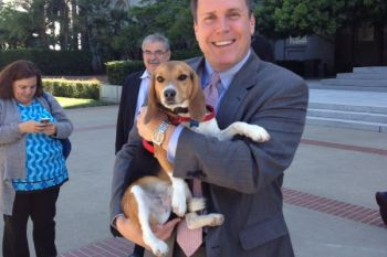 Supporting the Beagle Freedom Project